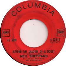 Neil Sheppard -- In My Imagination / Beyond the Shadow of a Doubt - 7