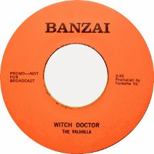 The Valhallla -- Witch Doctor b/w Mister Fantasy - 7