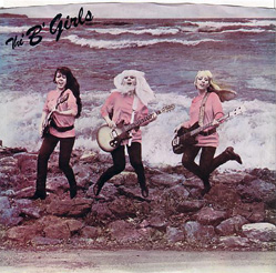 The B Girls - Fun at the Beach /  B Side - 7